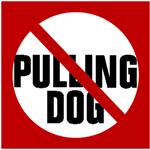 stop-dog-pulling-w-wackywalkr-2.png