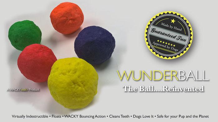 Wunderball Dog Toy
